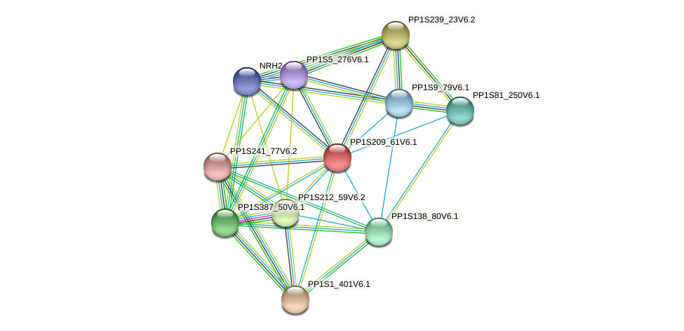 PP1S209_61V6.1 protein (Physcomitrella patens) - STRING interaction network