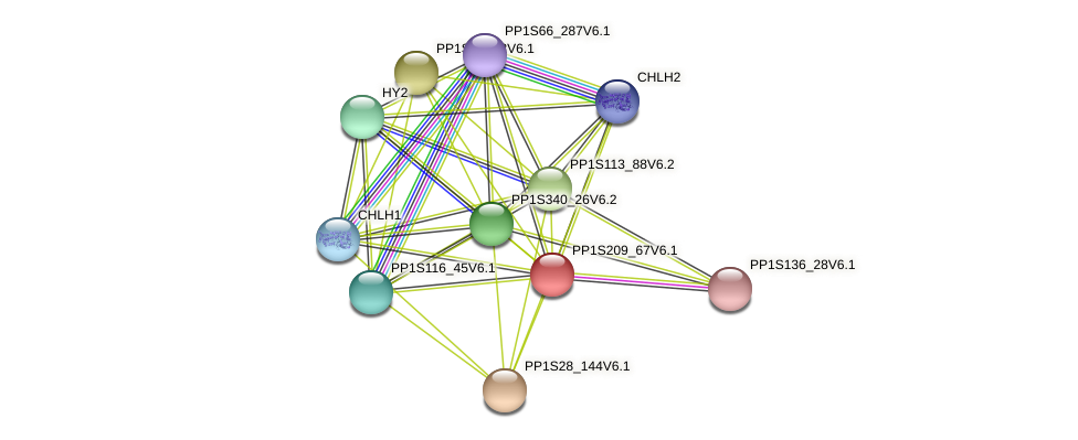 PP1S209_67V6.1 protein (Physcomitrella patens) - STRING interaction network