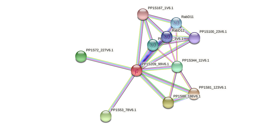 PP1S209_99V6.1 protein (Physcomitrella patens) - STRING interaction network