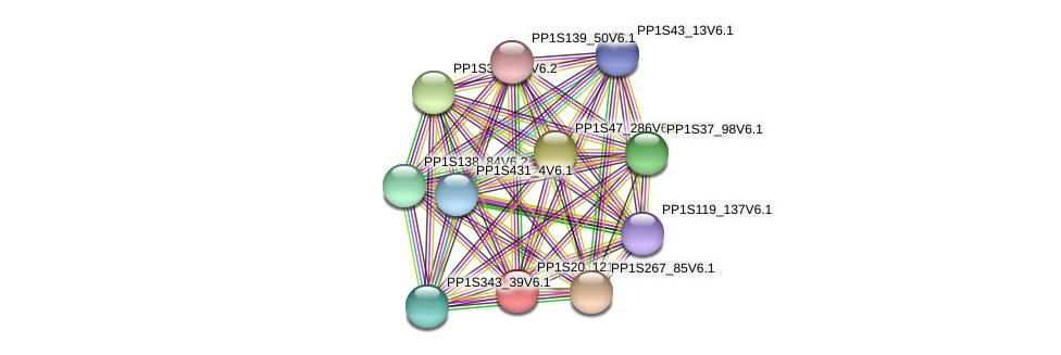 PP1S20_121V6.1 protein (Physcomitrella patens) - STRING interaction network