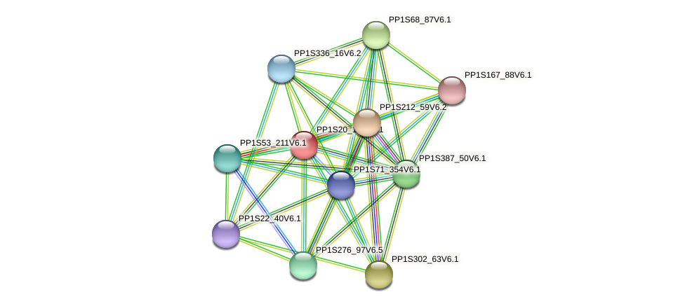 PP1S20_135V6.1 protein (Physcomitrella patens) - STRING interaction network