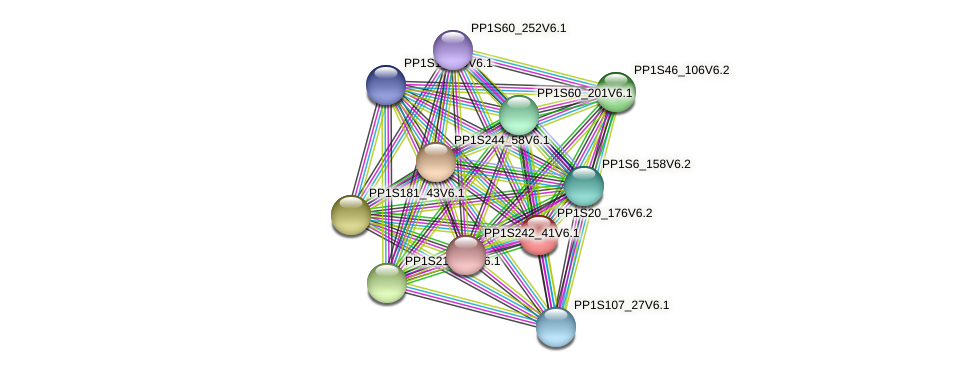 PP1S20_176V6.2 protein (Physcomitrella patens) - STRING interaction network