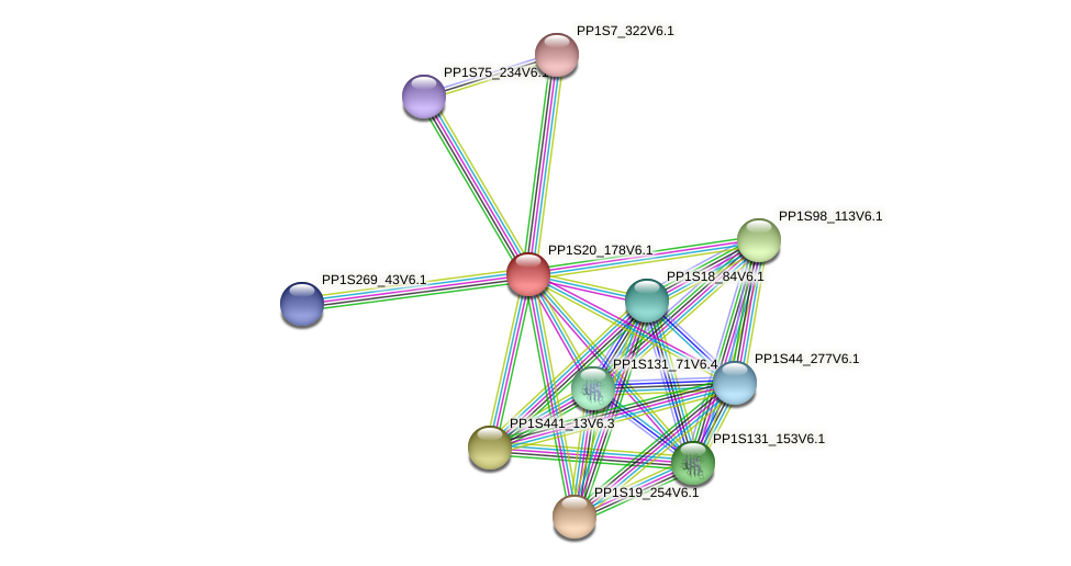 PP1S20_178V6.1 protein (Physcomitrella patens) - STRING interaction network