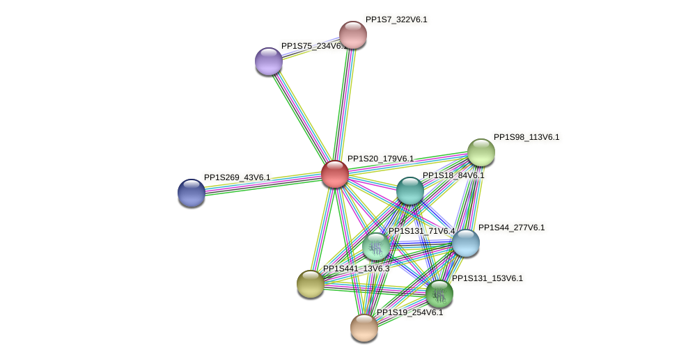 PP1S20_179V6.1 protein (Physcomitrella patens) - STRING interaction network