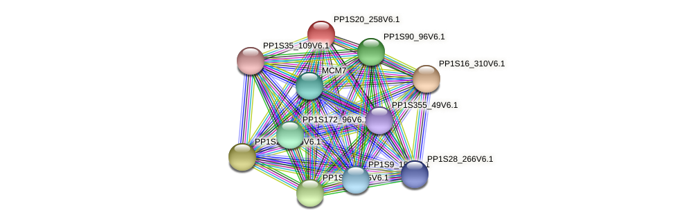 PP1S20_258V6.1 protein (Physcomitrella patens) - STRING interaction network