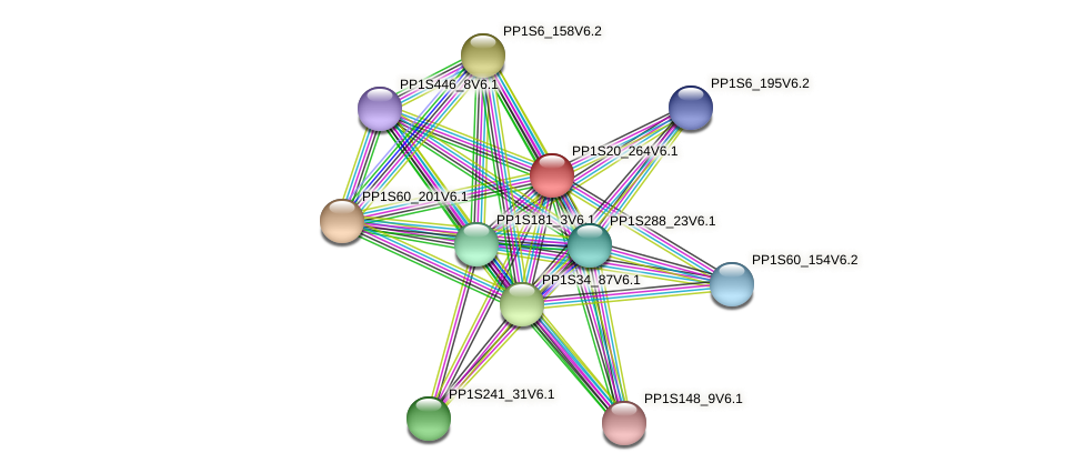 PP1S20_264V6.1 protein (Physcomitrella patens) - STRING interaction network
