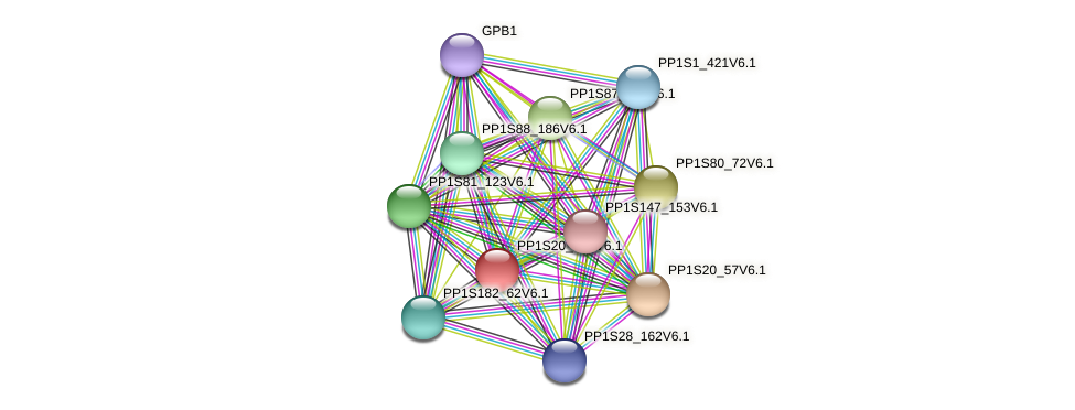 PP1S20_266V6.1 protein (Physcomitrella patens) - STRING interaction network