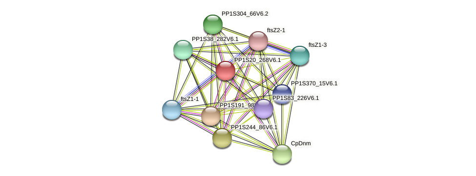 PP1S20_268V6.1 protein (Physcomitrella patens) - STRING interaction network