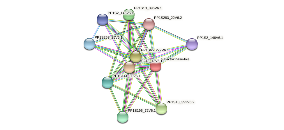 PP1S20_285V6.1 protein (Physcomitrella patens) - STRING interaction network
