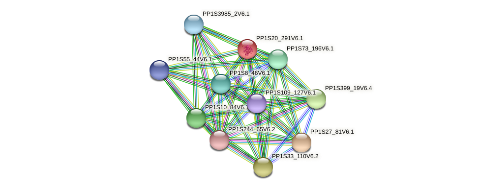 PP1S20_291V6.1 protein (Physcomitrella patens) - STRING interaction network