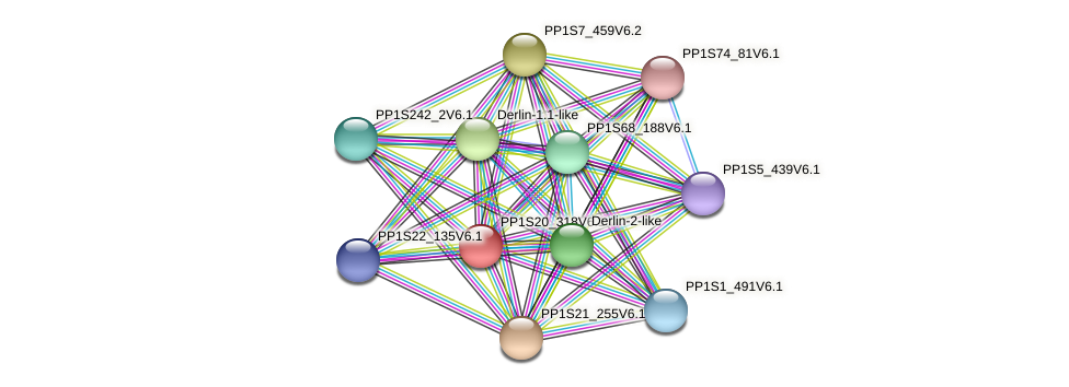 PP1S20_318V6.1 protein (Physcomitrella patens) - STRING interaction network