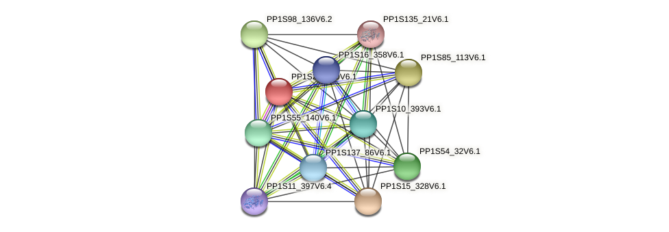 PP1S20_320V6.1 protein (Physcomitrella patens) - STRING interaction network