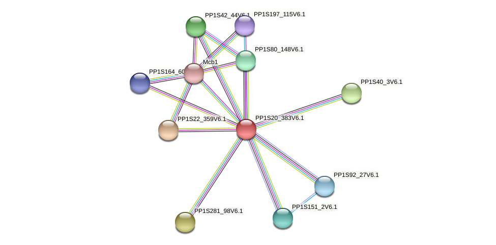 PP1S20_383V6.1 protein (Physcomitrella patens) - STRING interaction network