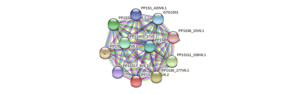PP1S20_386V6.1 protein (Physcomitrella patens) - STRING interaction network