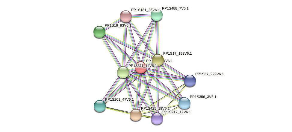 PP1S20_64V6.1 protein (Physcomitrella patens) - STRING interaction network