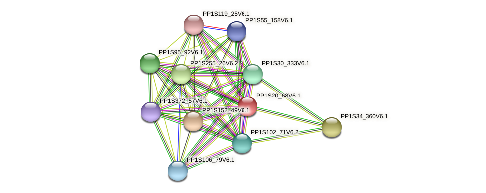 PP1S20_68V6.1 protein (Physcomitrella patens) - STRING interaction network