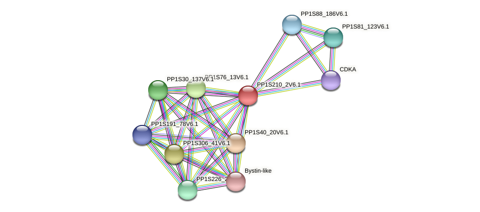 PP1S210_2V6.1 protein (Physcomitrella patens) - STRING interaction network
