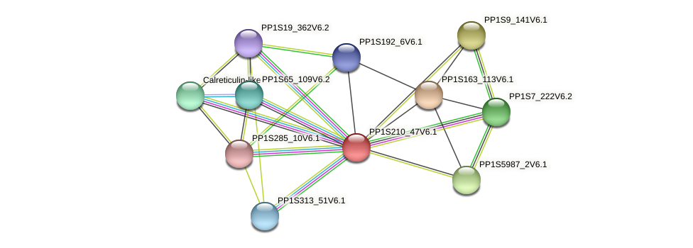 PP1S210_47V6.1 protein (Physcomitrella patens) - STRING interaction network