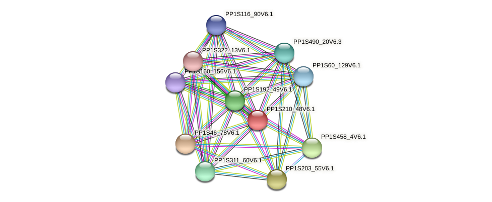 PP1S210_48V6.1 protein (Physcomitrella patens) - STRING interaction network