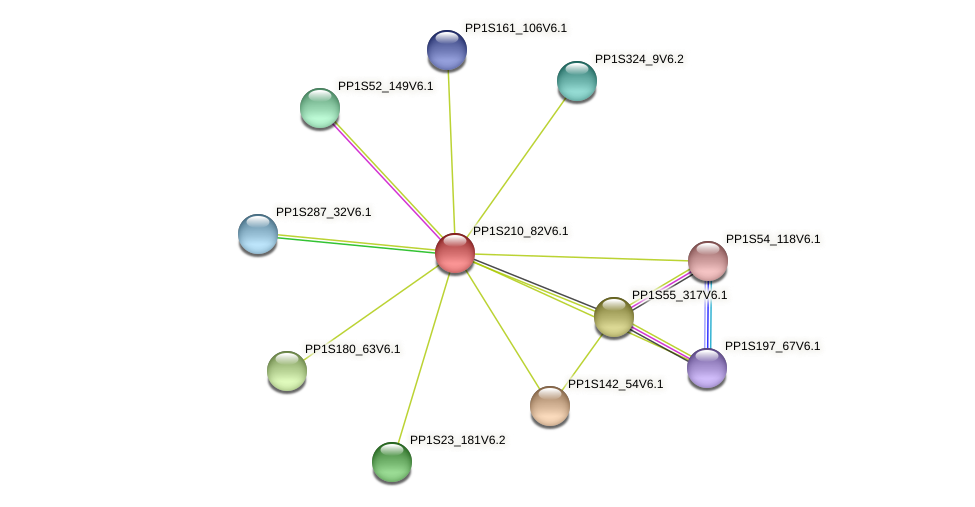 PP1S210_82V6.1 protein (Physcomitrella patens) - STRING interaction network