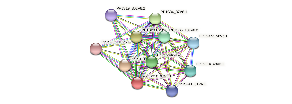 PP1S210_97V6.1 protein (Physcomitrella patens) - STRING interaction network