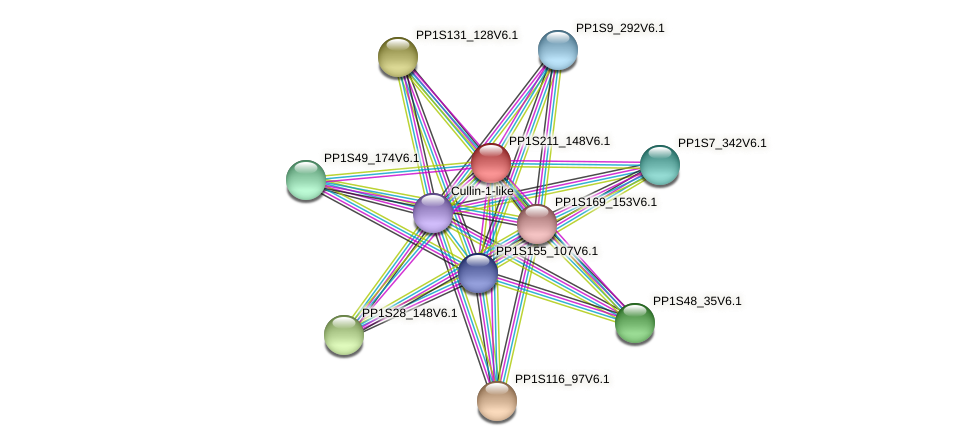 PP1S211_148V6.1 protein (Physcomitrella patens) - STRING interaction network