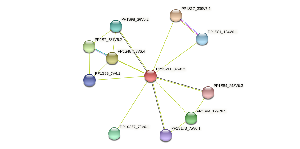 PP1S211_32V6.2 protein (Physcomitrella patens) - STRING interaction network