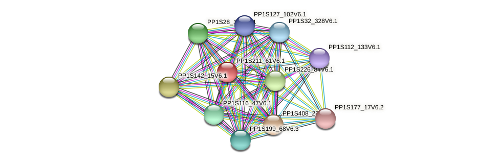 PP1S211_61V6.1 protein (Physcomitrella patens) - STRING interaction network
