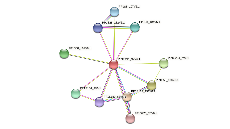 PP1S211_92V6.1 protein (Physcomitrella patens) - STRING interaction network