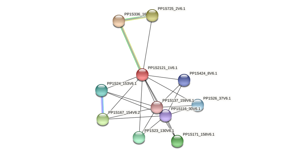 PP1S2121_1V6.1 protein (Physcomitrella patens) - STRING interaction network