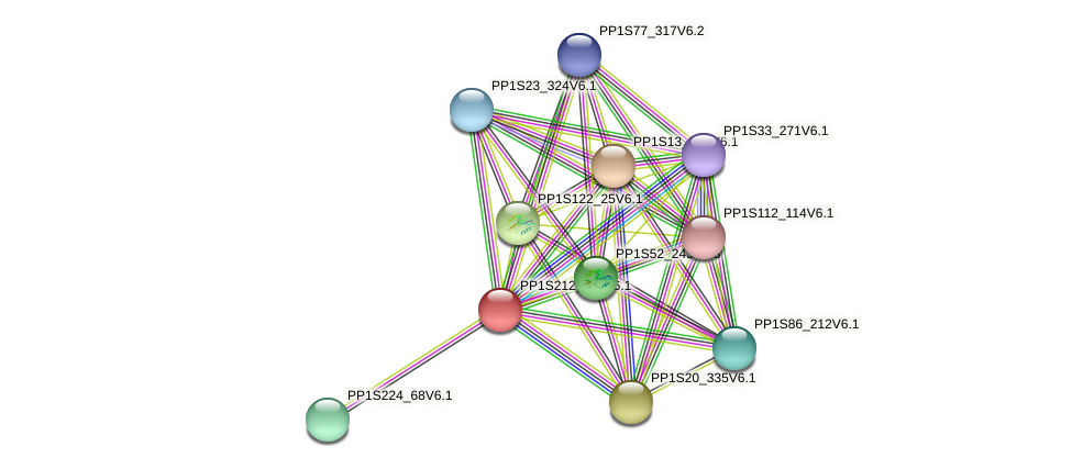PP1S212_114V6.1 protein (Physcomitrella patens) - STRING interaction network