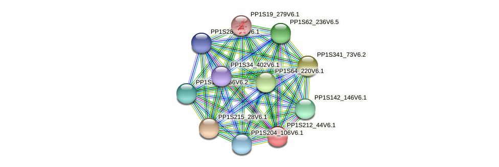 PP1S212_44V6.1 protein (Physcomitrella patens) - STRING interaction network