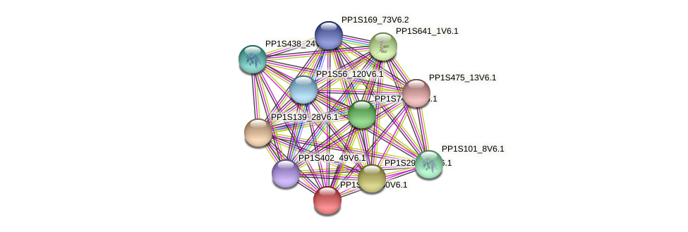 PP1S212_50V6.1 protein (Physcomitrella patens) - STRING interaction network