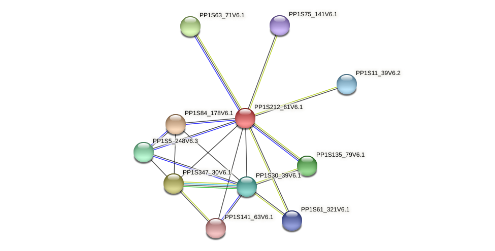 PP1S212_61V6.1 protein (Physcomitrella patens) - STRING interaction network