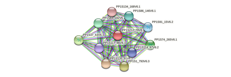 PP1S212_78V6.1 protein (Physcomitrella patens) - STRING interaction network