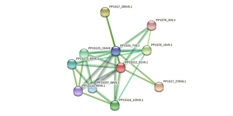PP1S212_81V6.1 protein (Physcomitrella patens) - STRING interaction network