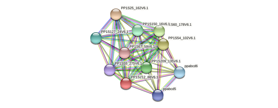 PP1S212_88V6.1 protein (Physcomitrella patens) - STRING interaction network
