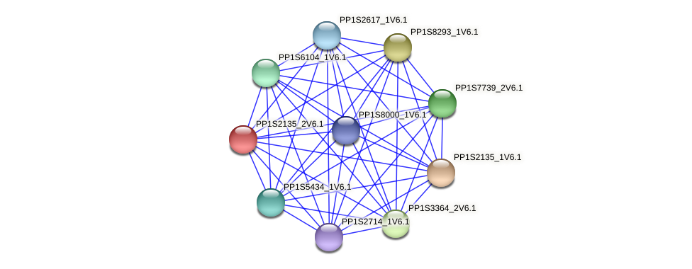 PP1S2135_2V6.1 protein (Physcomitrella patens) - STRING interaction network