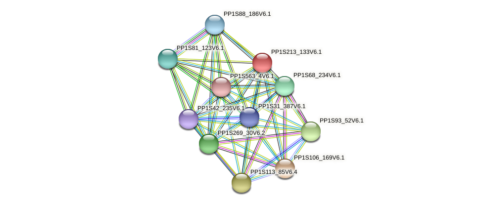 PP1S213_133V6.1 protein (Physcomitrella patens) - STRING interaction network