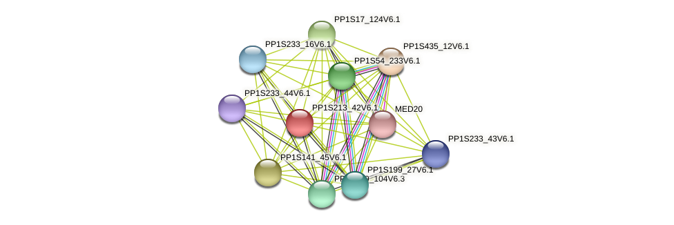 PP1S213_42V6.1 protein (Physcomitrella patens) - STRING interaction network