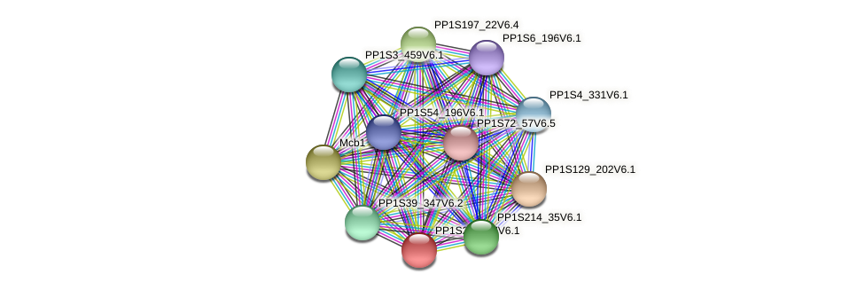 PP1S213_87V6.1 protein (Physcomitrella patens) - STRING interaction network