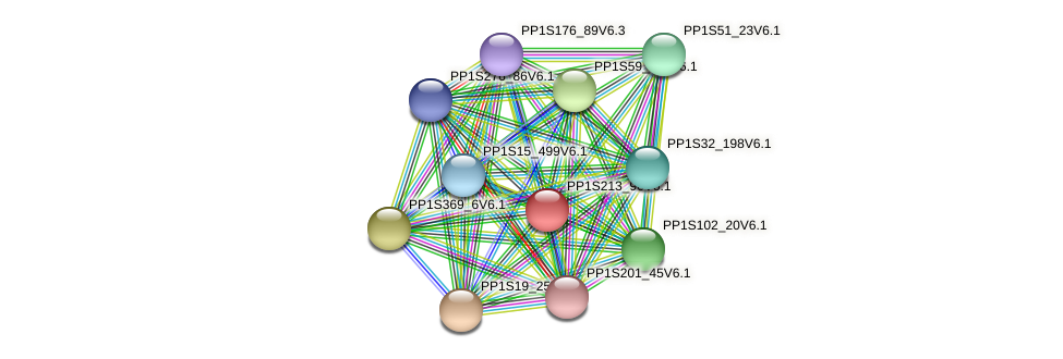 PP1S213_96V6.1 protein (Physcomitrella patens) - STRING interaction network