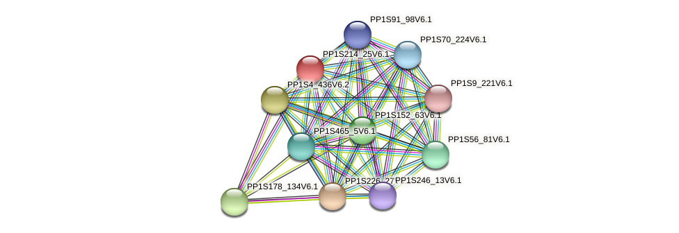 PP1S214_25V6.1 protein (Physcomitrella patens) - STRING interaction network