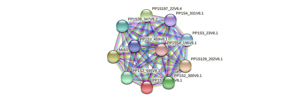 PP1S214_40V6.1 protein (Physcomitrella patens) - STRING interaction network