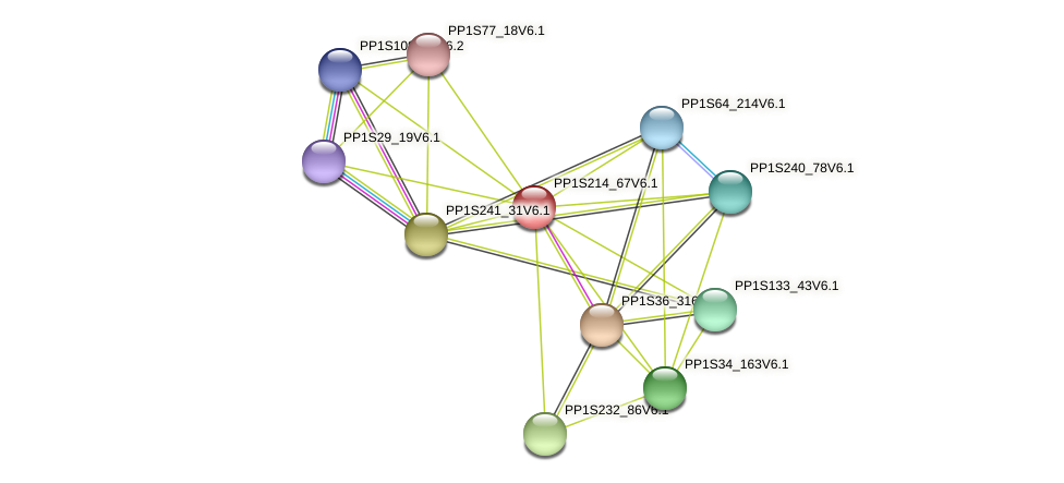 PP1S214_67V6.1 protein (Physcomitrella patens) - STRING interaction network