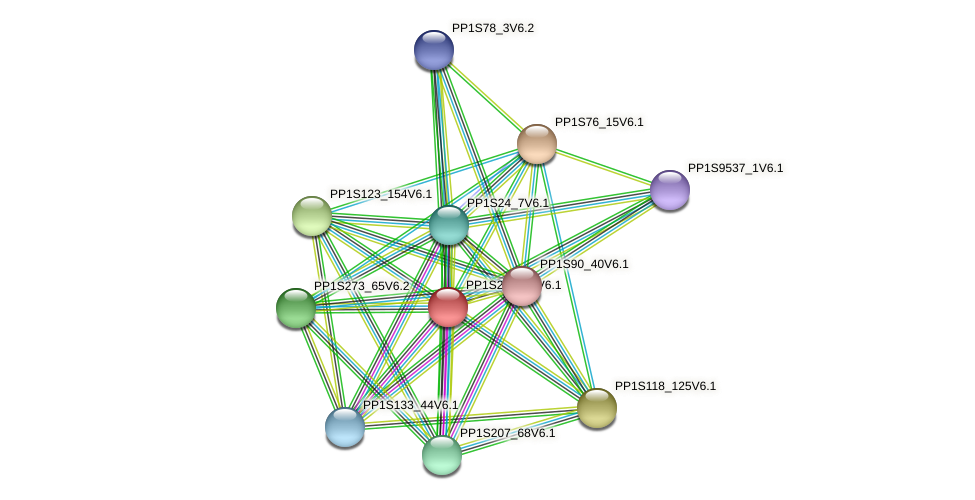 PP1S214_74V6.1 protein (Physcomitrella patens) - STRING interaction network
