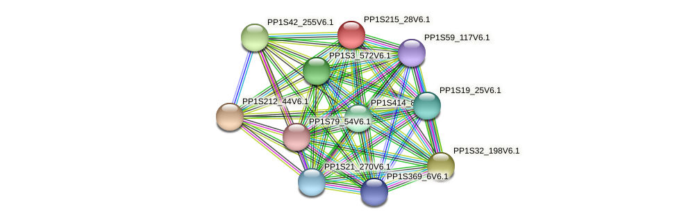 PP1S215_28V6.1 protein (Physcomitrella patens) - STRING interaction network