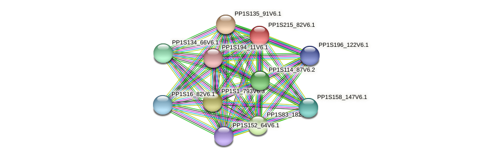 PP1S215_82V6.1 protein (Physcomitrella patens) - STRING interaction network
