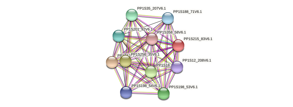 PP1S215_83V6.1 protein (Physcomitrella patens) - STRING interaction network