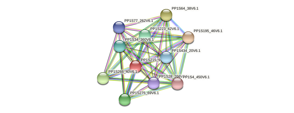 PP1S215_91V6.1 protein (Physcomitrella patens) - STRING interaction network